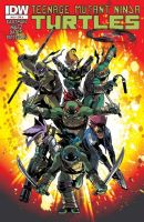 Teenage Mutant Ninja Turtles #19 - Cover A
